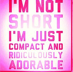 compact adorable shortgirlsdoitbetter quotesandsayings colorful