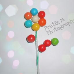 flower art candy bokeh photography