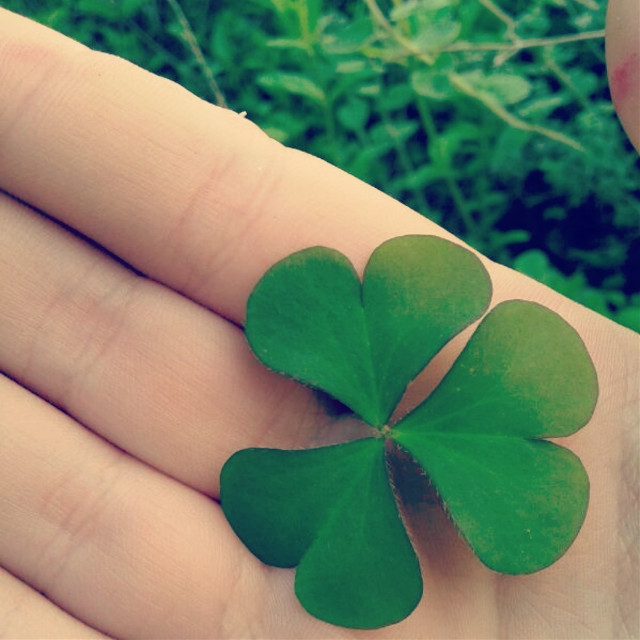 luck paper  #wap3 #green #three #heart #3 ♥