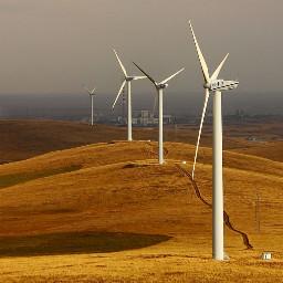 grasslands wind power autumn colorful nature
