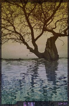 rainyday nature gradienteffect popart tree