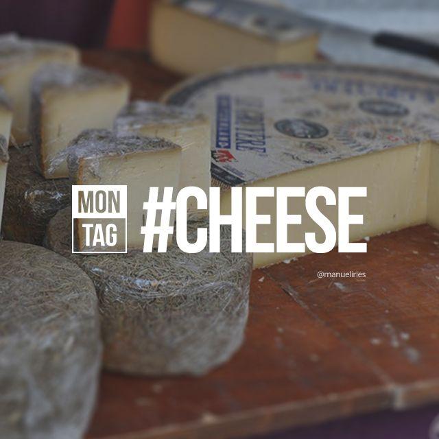 hashtag cheese photos