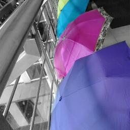 photography umbrella colourful love lobby